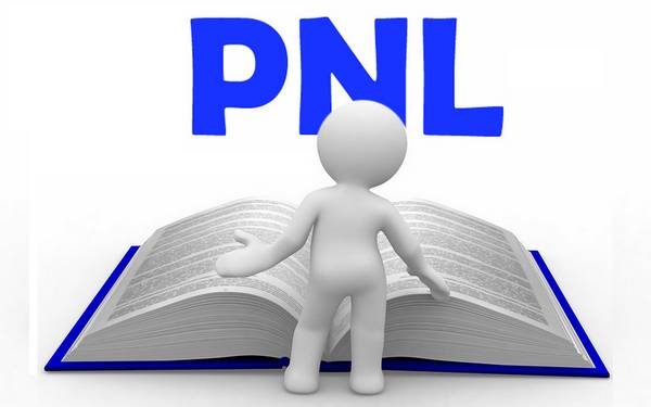 PNL-Coaching